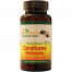 Biotech Nutritions Caralluma Fimbriata for Weight Loss